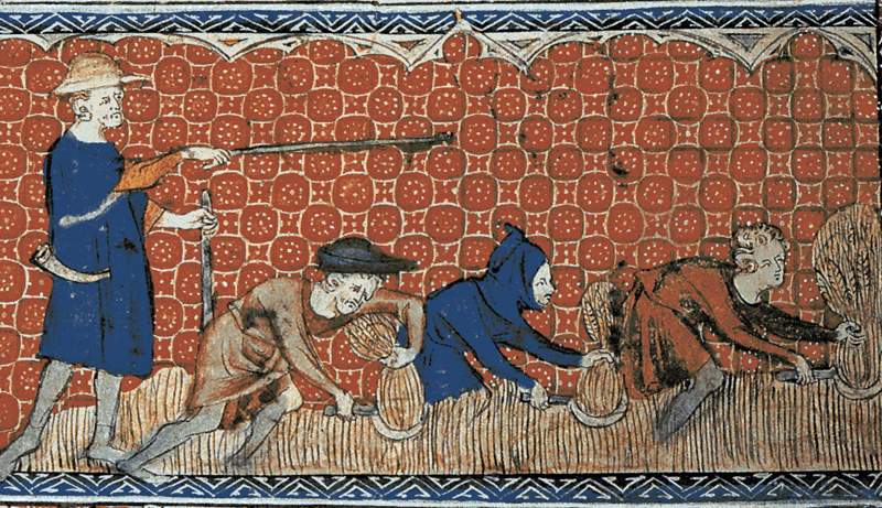 Feudal Revolution and Its Impact